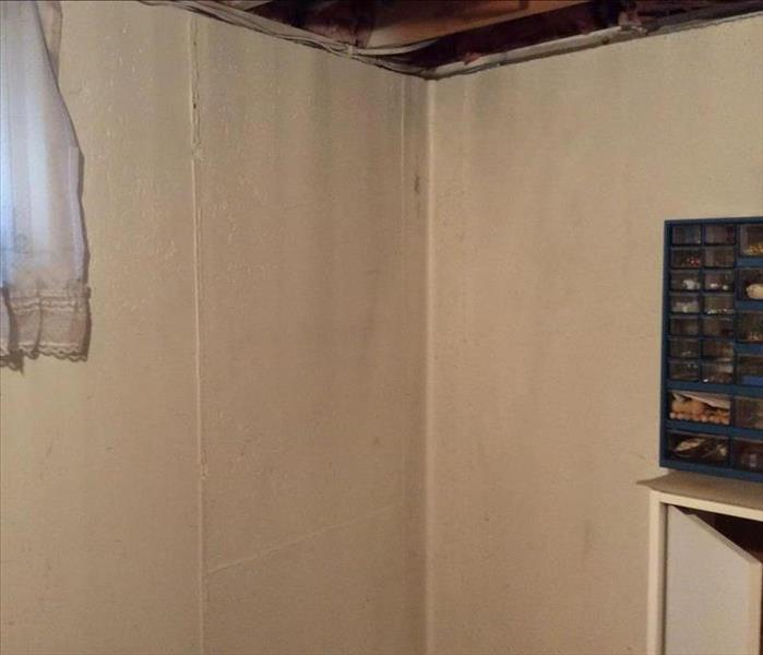 Mold Remediation in Basement in Wyoming, MI After