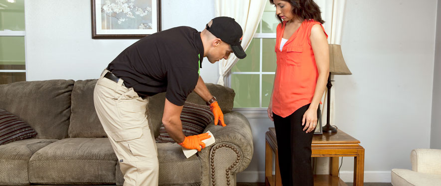 Northwest Grand Rapids, MI carpet upholstery cleaning
